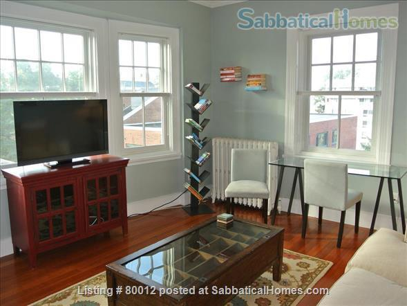Sunny, furnished 1-bedroom penthouse apartment in Harvard Square with parking and roof deck Home Rental in Cambridge, Massachusetts, United States 2