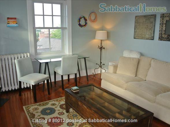 Sunny, furnished 1-bedroom penthouse apartment in Harvard Square with parking and roof deck Home Rental in Cambridge, Massachusetts, United States 3