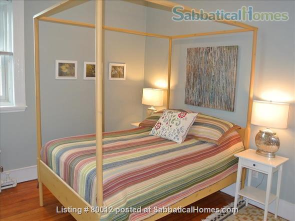 Sunny, furnished 1-bedroom penthouse apartment in Harvard Square with parking and roof deck Home Rental in Cambridge, Massachusetts, United States 4