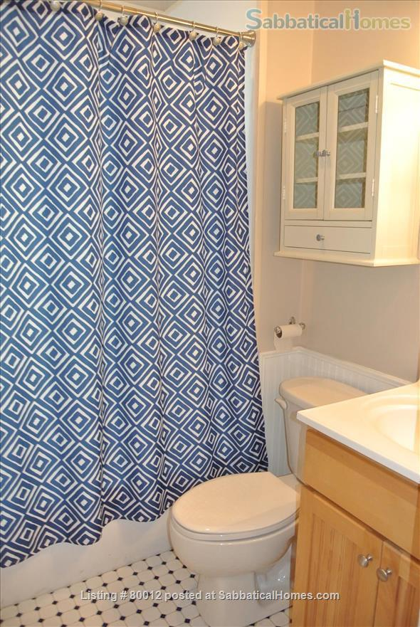 Sunny, furnished 1-bedroom penthouse apartment in Harvard Square with parking and roof deck Home Rental in Cambridge, Massachusetts, United States 7
