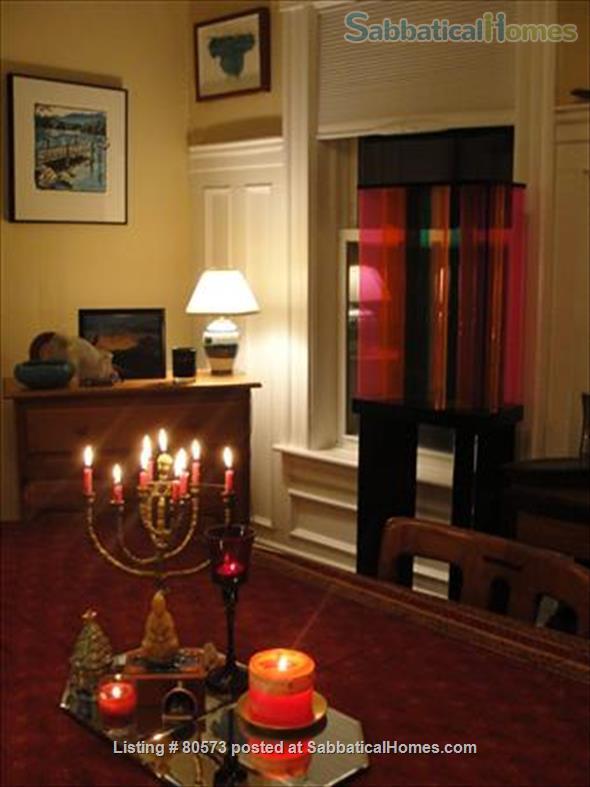 Beautiful Sunny Washington Sq Brookline 3 BR Condo  Home Rental in Brookline, Massachusetts, United States 2