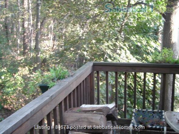 Beautiful Sunny Washington Sq Brookline 3 BR Condo  Home Rental in Brookline, Massachusetts, United States 5