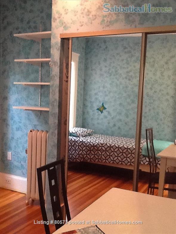 Beautiful Sunny Washington Sq Brookline 3 BR Condo  Home Rental in Brookline, Massachusetts, United States 7