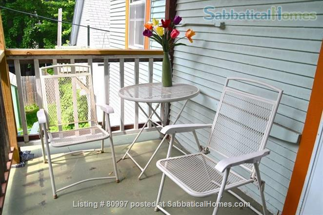 LARGE SUNNY  NEAR EAST FLAT, charming and beautifully artistic. Home Rental in Madison, Wisconsin, United States 8