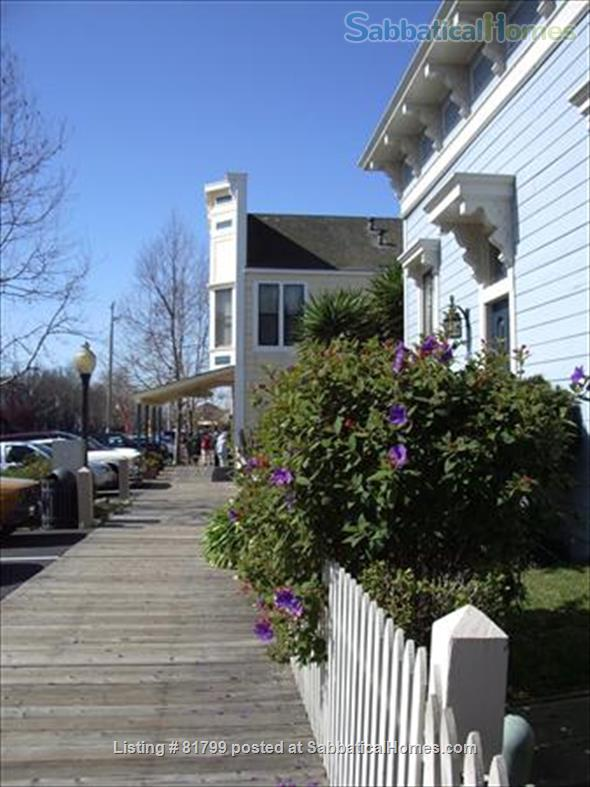 Victorian condo in quiet historic & conveniently located Berkeley neighborhood: $600/week (June 1, 2021-January 15, 2022) Home Rental in Berkeley, California, United States 0