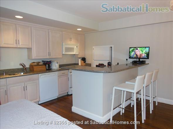 HARVARD SQUARE 2br&2br (fully furnished&renovated) Home Rental in Cambridge, Massachusetts, United States 0