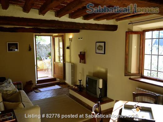 Tuscan Cottage Home Rental in Casalguidi, Tuscany, Italy 0