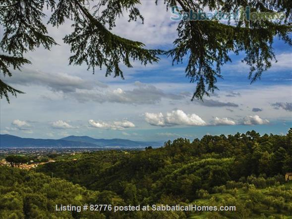 Tuscan Cottage Home Rental in Casalguidi, Tuscany, Italy 3