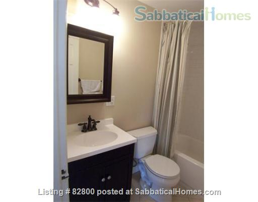 Newton Center/Boston - Our Sabbatical Favorite - July 1, 2021 Home Rental in Newton, Massachusetts, United States 6