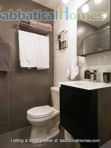 Beautiful 2-bedroom apartment in Montreal   Home Rental in Montreal, Quebec, Canada 7