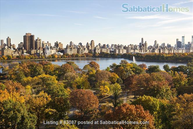 Spacious, sunny studio with incredible view of Central Park/Steps from subway and buses Home Rental in New York, New York, United States 1