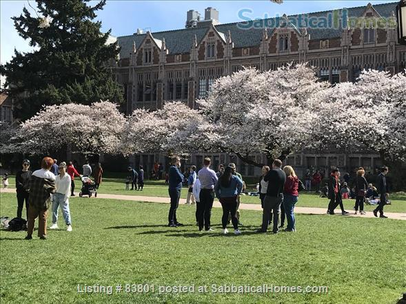 Wallingford/Greenlake/University of Washington- Quiet, 1 Bedroom 1 bath with private entrance in vibrant neighborhood Home Rental in Seattle, Washington, United States 9