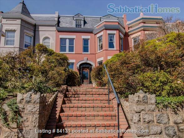 Nice One bedroom English Basement Apartment in Capitol Hill Home Rental in Washington, District of Columbia, United States 1