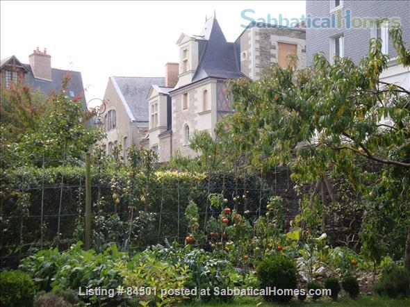 Stunning 16th century Sabbatical home away from home at the heart of lively city! Home Rental in Angers, Pays de la Loire, France 0