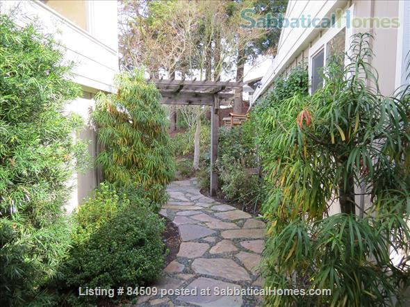 Charming, fully furnished 1BR apartment in Orinda  Home Rental in Orinda, California, United States 0