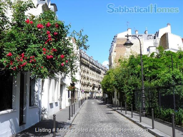 Bright, furnished 1 bedroom (Pernety, 75014) (by owner) Home Rental in Paris, IDF, France 1