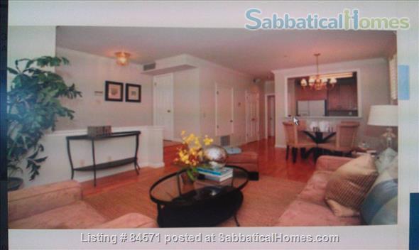Luxury 1 br condo near Stanford Home Rental in Atherton, California, United States 1