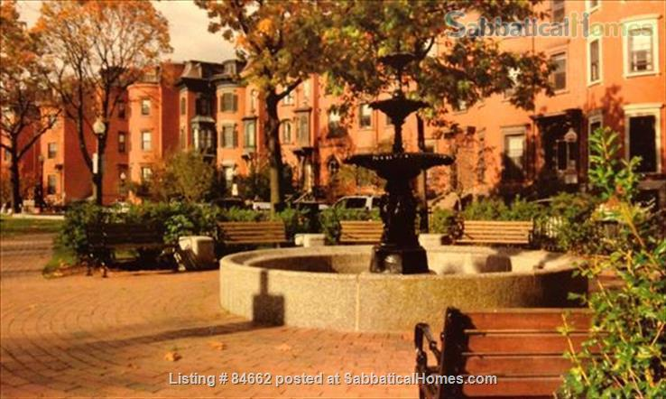 Period Victorian Boston Historic Neighborhood Condo with deck    Home Rental in Boston, Massachusetts, United States 9