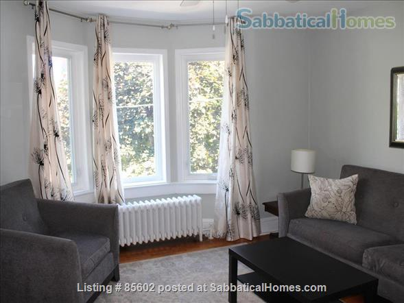 Beautifully Furnished 1 BD Apartment Home Rental in Toronto 1