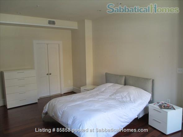DUPONT Circle-Large  Luxury Furnished 1BR  1+½ BATH Home Rental in Washington, District of Columbia, United States 4