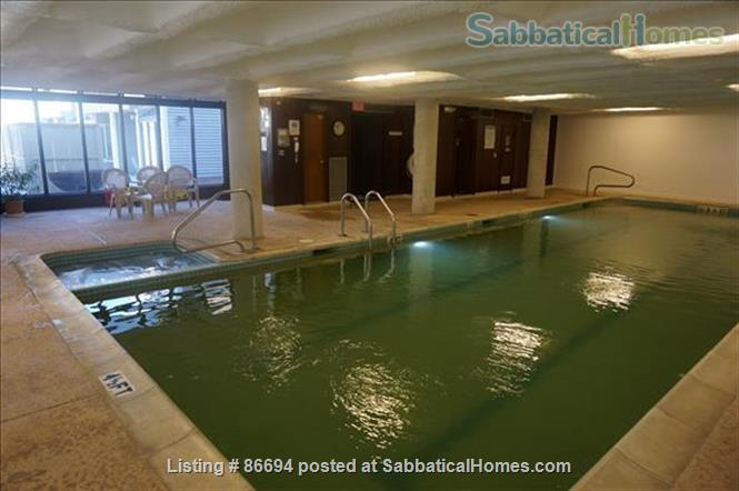 Cambridge 3bd 2.5ba furnished house; indoor swimming pool! Large garage Home Rental in Cambridge, Massachusetts, United States 1