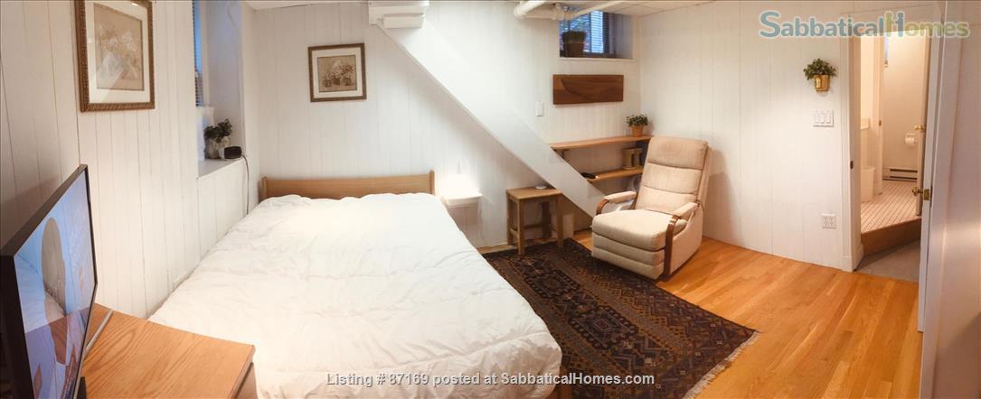 WALK TO HARVARD - 1-Bedroom Studio, garden level. Laundry, heat, all utils. Home Rental in Cambridge 2