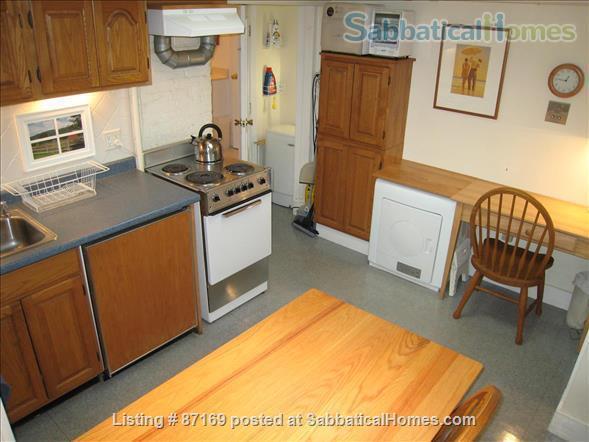 WALK TO HARVARD - 1-Bedroom Studio, garden level. Laundry, heat, all utils. Home Rental in Cambridge 4
