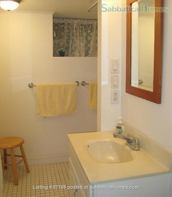 WALK TO HARVARD - 1-Bedroom Studio, garden level. Laundry, heat, all utils. Home Rental in Cambridge 6