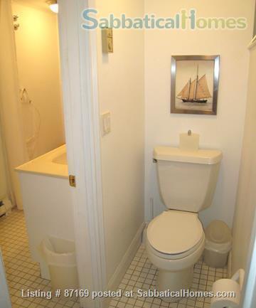 WALK TO HARVARD - 1-Bedroom Studio, garden level. Laundry, heat, all utils. Home Rental in Cambridge 7