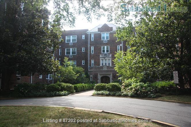 Furnished 1BR in Historic Washington Building- Price Reduced! Home Rental in Washington, District of Columbia, United States 1
