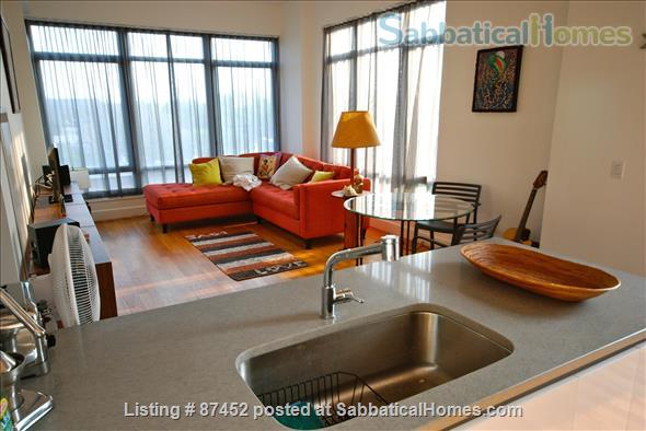 Modern luxury 2 bed/2 bath apartment in Brooklyn, New York Home Rental in Kings County, New York, United States 1