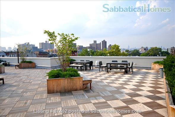 Modern luxury 2 bed/2 bath apartment in Brooklyn, New York Home Rental in Kings County, New York, United States 8