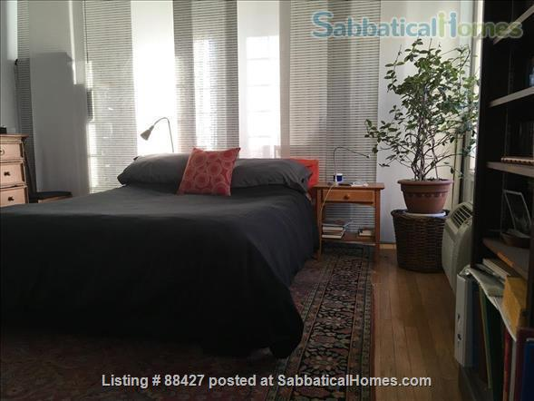 Elegant light-filled 2 bedroom condo NW D.C. Home Rental in Washington, District of Columbia, United States 5