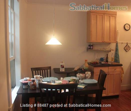 Harvard Square townhouse, 1 BR, all utilities Home Rental in Cambridge, Massachusetts, United States 0