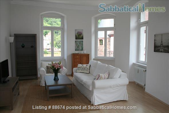 2BR, 1.5BA apt in Heidelberg Altstadt Home Rental in Heidelberg 1