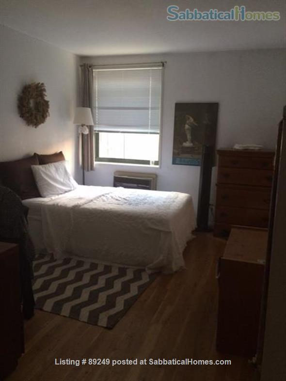 Share Large, Sunny Duplex in Far W. Vill. (Clean/Coronavirus conscious) Home Rental in New York 6