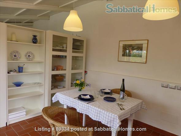 converted greenhouse Home Rental in Florence, Tuscany, Italy 4