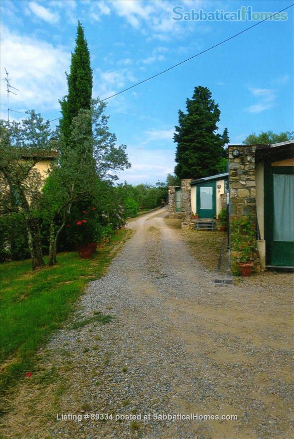 converted greenhouse Home Rental in Florence, Tuscany, Italy 9