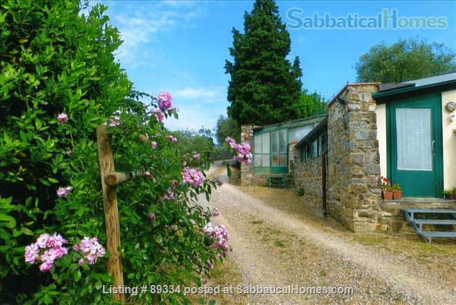 converted greenhouse Home Rental in Florence, Tuscany, Italy 6