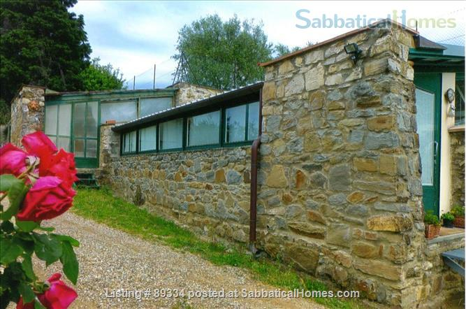 converted greenhouse Home Rental in Florence, Tuscany, Italy 7