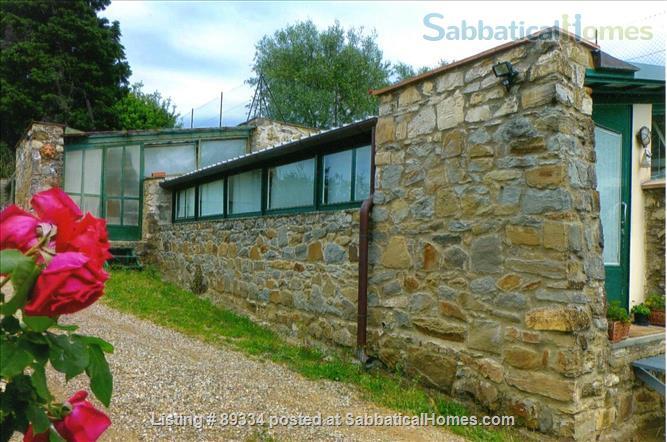 converted greenhouse Home Rental in Città Metropolitana di Firenze, Toscana, Italy 7