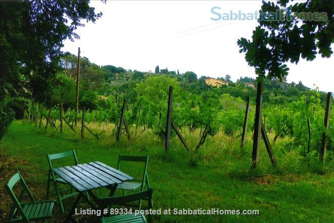 converted greenhouse Home Rental in Florence, Tuscany, Italy 8