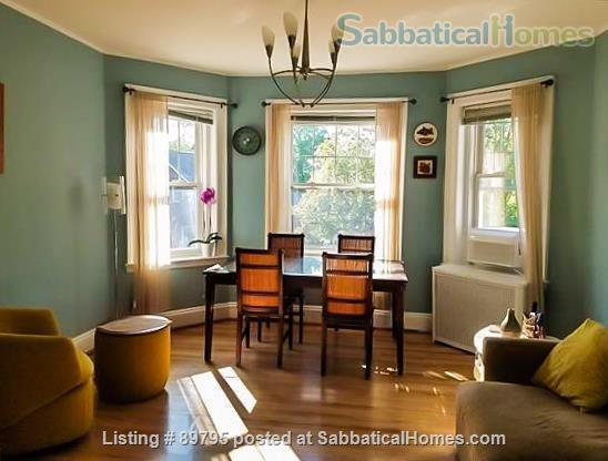 SUNNY SPACIOUS 3 BEDROOM IN BROOKLINE. WALKING DISTANCE TO COOLIDGE CORNER, MIT, AND LONGWOOD MEDICAL AREA Home Rental in Brookline, Massachusetts, United States 1