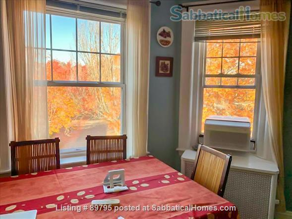 SUNNY SPACIOUS 3 BEDROOM IN BROOKLINE. WALKING DISTANCE TO COOLIDGE CORNER, MIT, AND LONGWOOD MEDICAL AREA Home Rental in Brookline, Massachusetts, United States 0