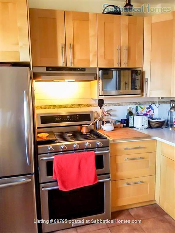SUNNY SPACIOUS 3 BEDROOM IN BROOKLINE. WALKING DISTANCE TO COOLIDGE CORNER, MIT, AND LONGWOOD MEDICAL AREA Home Rental in Brookline, Massachusetts, United States 3
