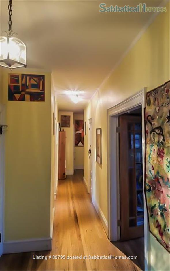 SUNNY SPACIOUS 3 BEDROOM IN BROOKLINE. WALKING DISTANCE TO COOLIDGE CORNER, MIT, AND LONGWOOD MEDICAL AREA Home Rental in Brookline, Massachusetts, United States 7