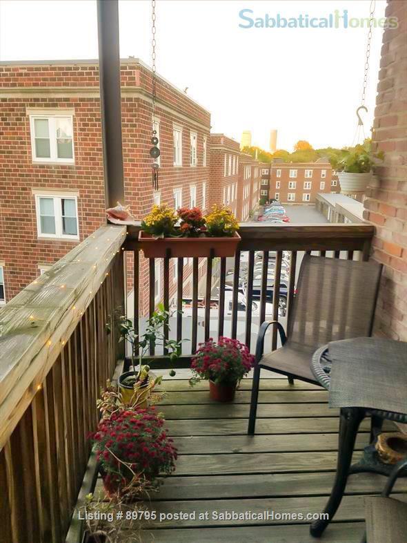 SUNNY SPACIOUS 3 BEDROOM IN BROOKLINE. WALKING DISTANCE TO COOLIDGE CORNER, MIT, AND LONGWOOD MEDICAL AREA Home Rental in Brookline, Massachusetts, United States 8