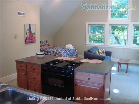 Furnished Studio Apartment - Ann Arbor Home Rental in Ann Arbor, Michigan, United States 4