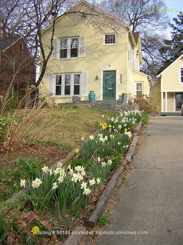 Beautiful apt. in Historic Takoma Park Home Rental in Takoma Park, Maryland, United States 9