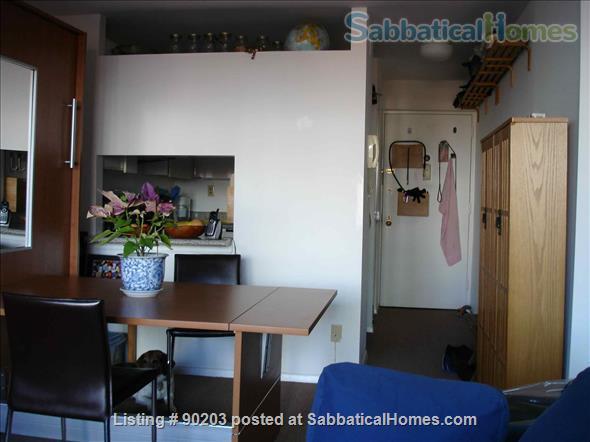 West Village Studio Home Rental in New York, New York, United States 2